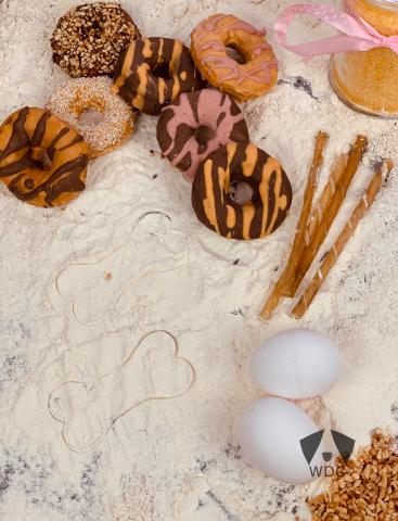 Die leckersten Donut für eure Vierbeiner